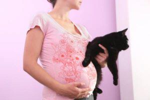 беременная с кошкой